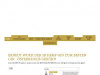 2bgin.at Webseite Vorschau