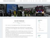 feuerwehr-borg.de
